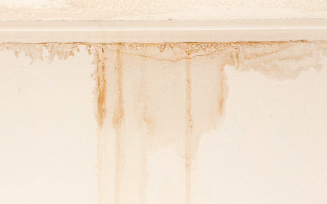 6 (Big) Problems That Look Like Roof Leaks – Part 2