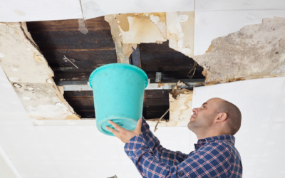 What Can Cause Your Parkville Home's Roof to Leak?